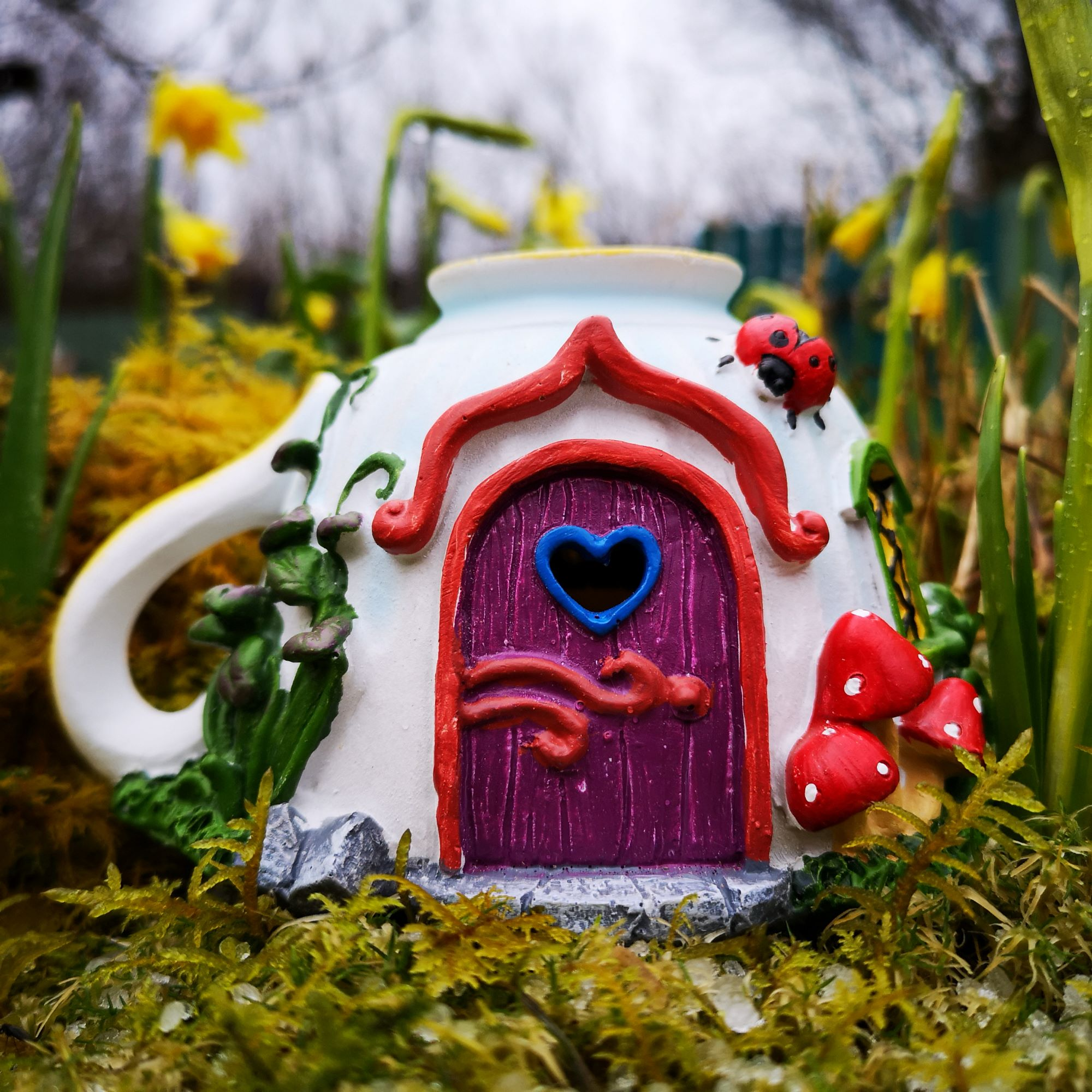 solar teacup fairy garden house