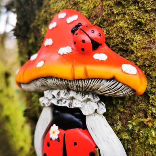 mushroom roof of ladybird door