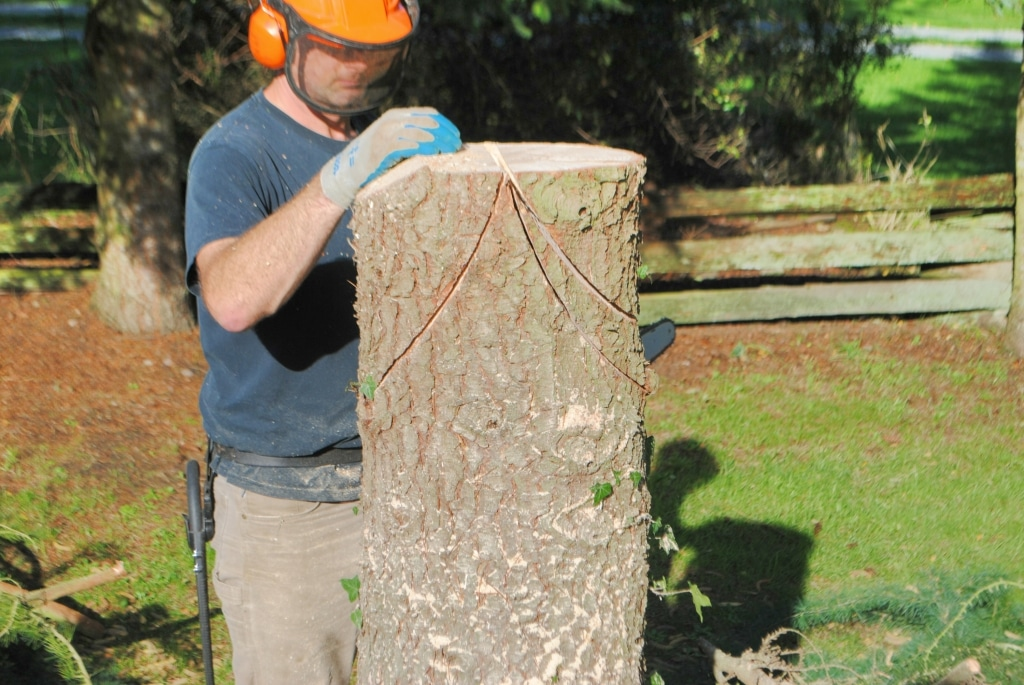 making a tree trunk fairy house with a chainsaw
