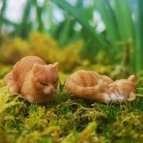 fairy garden miniature ginger cats