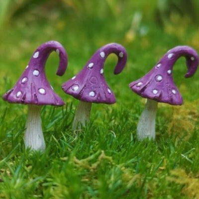 purple fairy garden accessories ireland