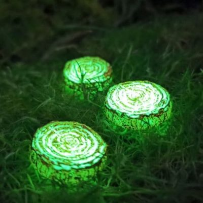 glowing fairy stepping stones