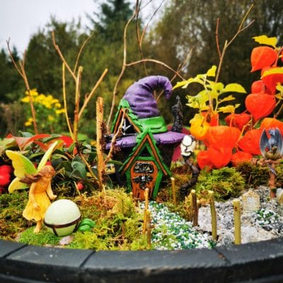 halloween fairy garden kit