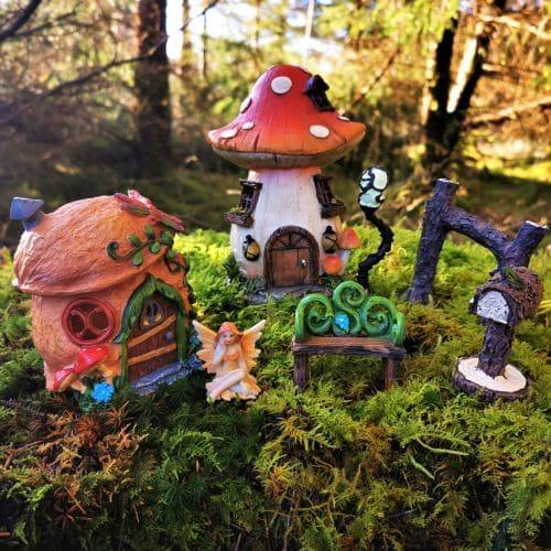 fairy garden kit ireland