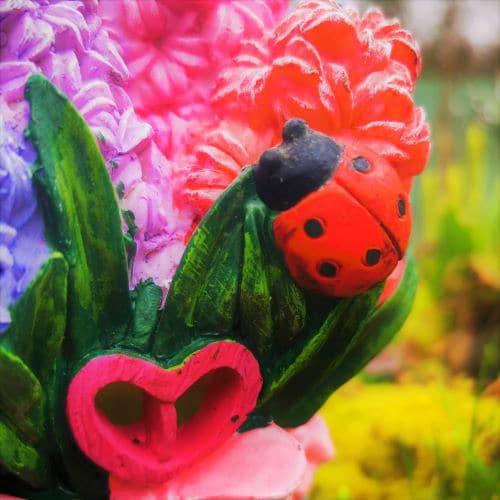 ladybird on the fairy house