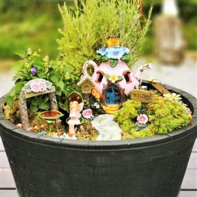 fairy garden Ireland