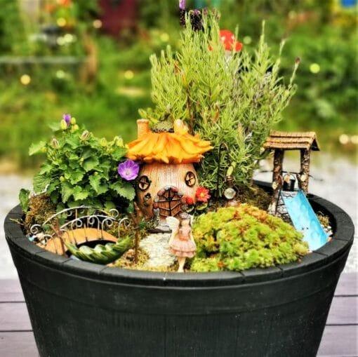 fairy garden kits ireland