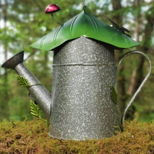 watering pail fairy home